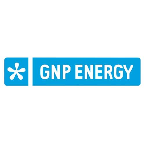 Gnp Energia Sähkön Kilpailutus Arvostelu